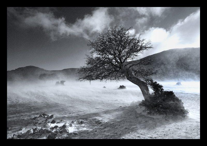 Landskabsfotografering