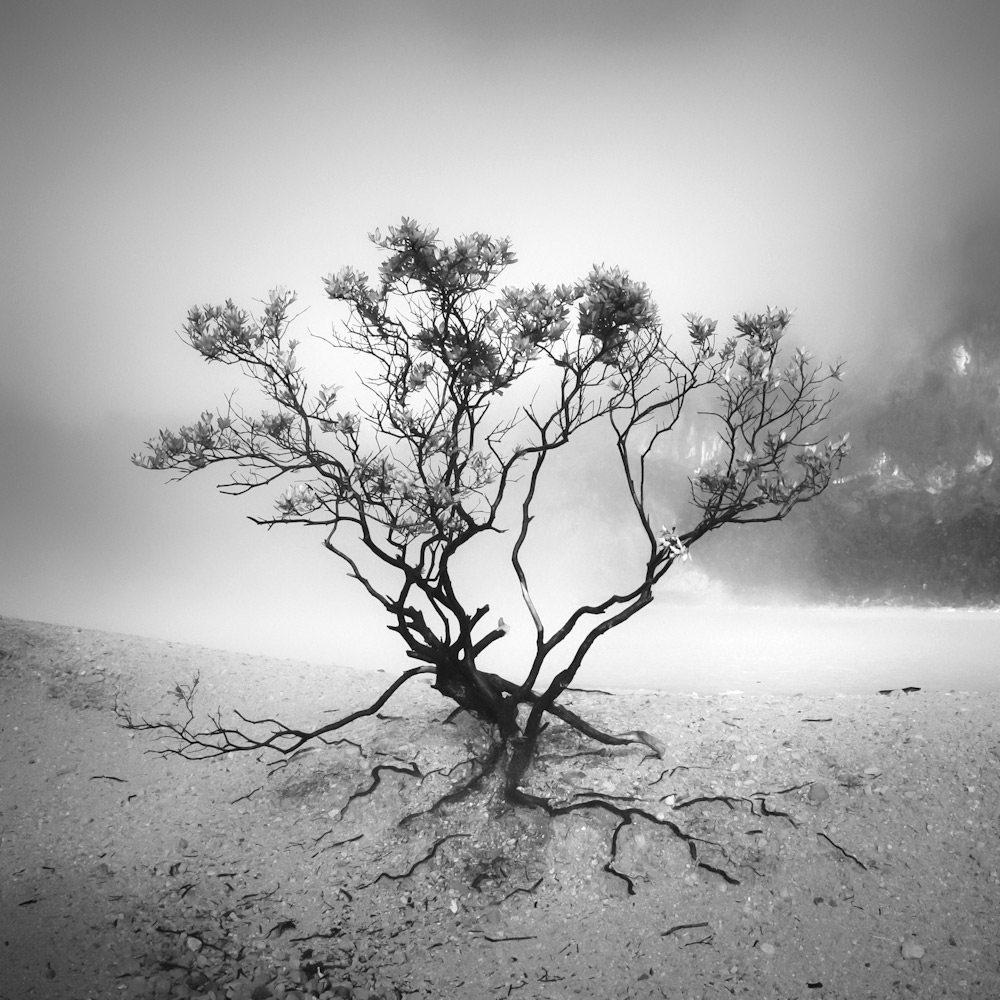 Photographer hengki koentjoro fotograf fotograf bliv for Foto minimaliste